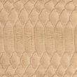 light brown lizard skin closeup