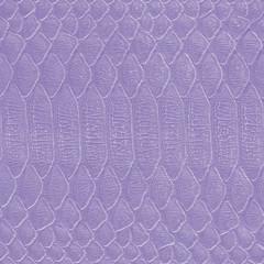violet reptilile  skin closeup