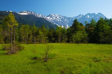 田代湿原から見た穂高連峰