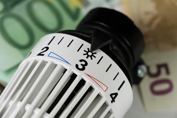 Energie sparen - Thermostat mit Euros - g564