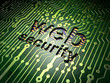 Web development concept: Web Security on circuit board