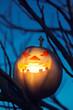 halloween jack-o-lantern on spooky tree