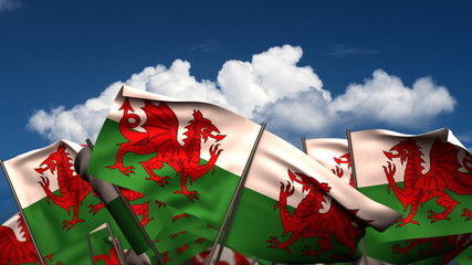 Waving Welsh Flags