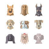 Collection of dog icons in flat style