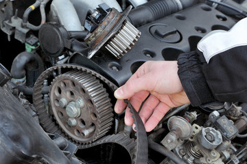 Service, car mechanic replace timing belt at camshaft of engine