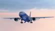 Aiplane landing