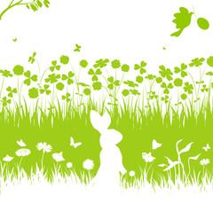 blumenwiese, blume,blüte,wiese,hase,osterhase,grün,floral,rasen