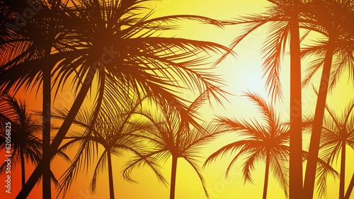 Horizontal illustration silhouettes of palms.