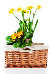basket with flowers isolated on white