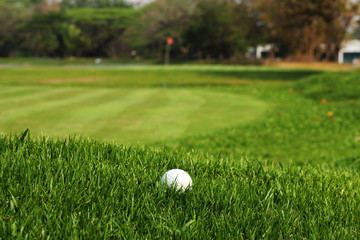 Golf ball in rough grass near the putting green
