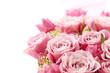 バラ、贈り物