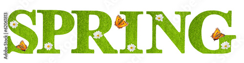 Foto op Canvas Madeliefjes Spring Butterflies