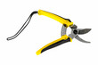 yellow pruning shears