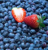 Freshly picked blueberries with strawberry