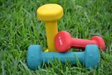 Healthy life - 62067069