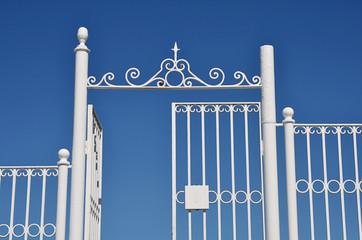 Puerta y reja metálica
