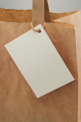 paper bag blank tag