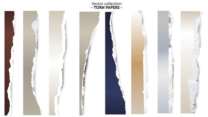 Collection of torn papers on white background, vector