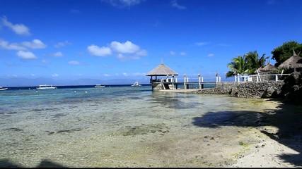 0n the reef