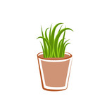 Flowerpot with green grass plants