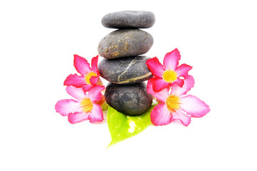 Zen And Spa Stone With Fangipani Flower