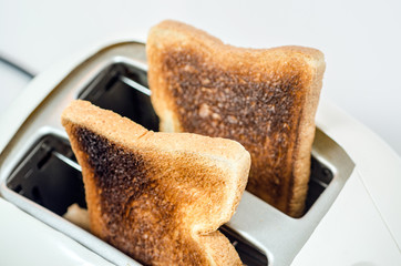 Close up of Toast in a toaster Path