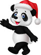 Panda wearing red hat waving hand