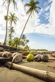 Playa Vizcaya Costa Rica poster