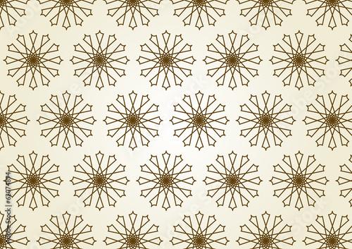 Plexiglas Kunstmatig Star Circle Line and Center Flower Pattern on Pastel Color