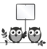 Owls with blank sign copy space for own text