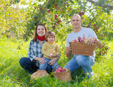 Happy  family  with apple harvest