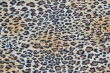 fabric with a leopard pattern