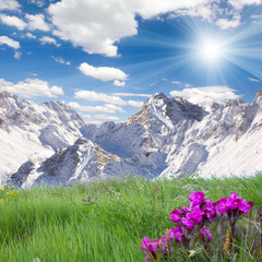 Mountains and grass