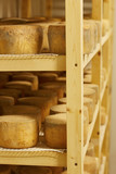 Cheese madurating in storage room