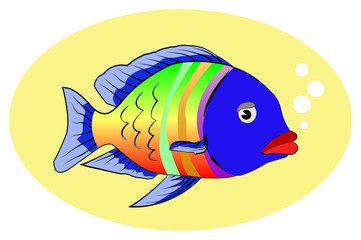 multicolor fish