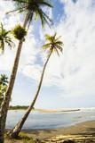 Playa Vizcaya Port Limon Costa Rica poster