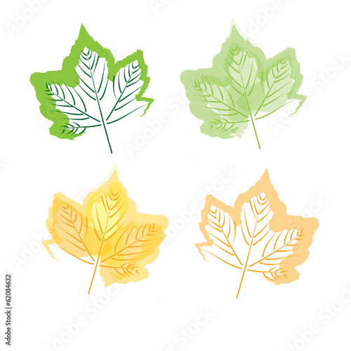 Hand drawing leaf set