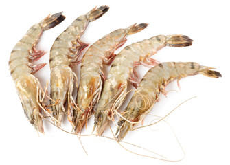 Raw shrimps isolated on white