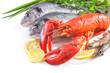 sea food on white background