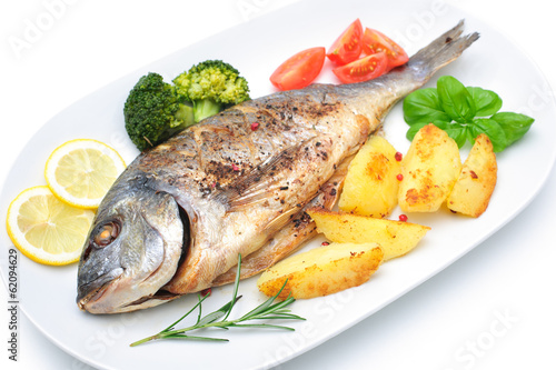 Sea bream fish