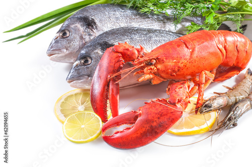 sea food on white background