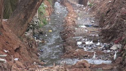 Nature catastrophic pollution,India, Asia