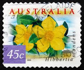 Postage stamp Australia 1999 Snake Vine, Hibbertia Scandens