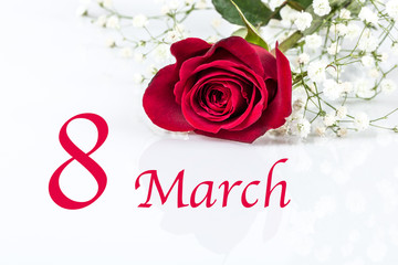 8 march card for women's day