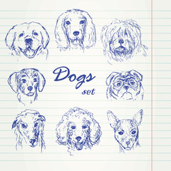 hand drawn dogs set