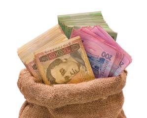 Money bag with hryvna