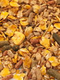 natural sportive  muesli background for horse. macro