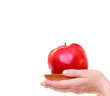 Female hands holding red apple healthy fruit isolated