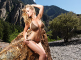 blonde in bikini with big breasts posing on rock