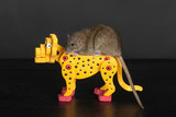 rat on toy leopard